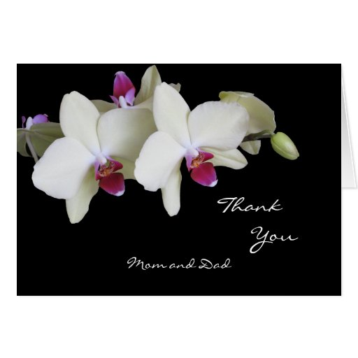 Orchid Wedding Thank You Card to Parents