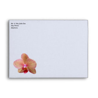 Orchid White Envelope