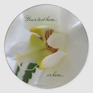 Orchid White Flower Stickers / Wedding Stickers