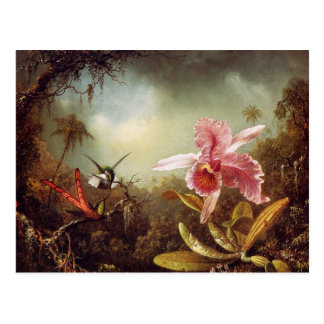 Orchid with Two Hummingbirds Postcard