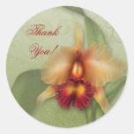 Orchid Wonder Sticker