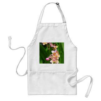 Orchidaceae Apron