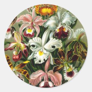 Orchidae Round Sticker