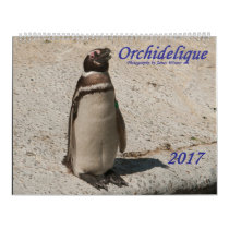 Orchidelique's 2017 Animal Calendar