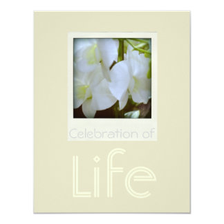 """Orchids 1 Celebration of Life Funeral Announcement 4.25"""" X 5.5"""" Invitation Card"""