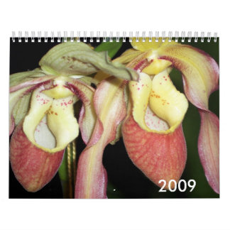 Orchids 2009 calendar