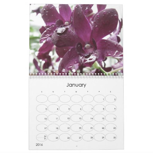 Orchids ~ 2012 Nature Photography Calendar