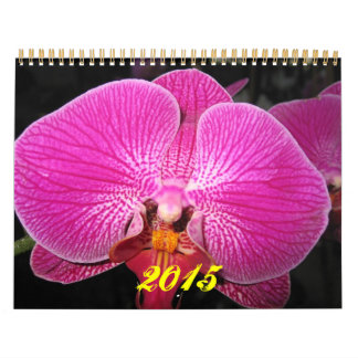 Orchids 2015 photography calendar