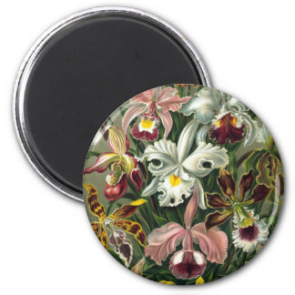 Orchids 2 Inch Round Magnet