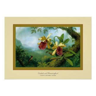 Orchids and Hummingbird~ Martin Johnson Heade Poster
