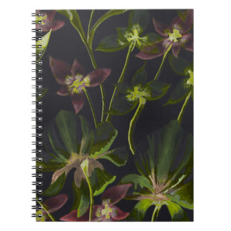 Orchids and Lilies Reverse Abstract Notebook