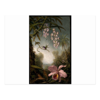 Orchids and Spray Orchids with Hummingbird by Mart Postcard