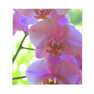 Orchids Bloc Mémo