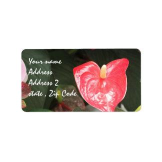 Orchids blooms label