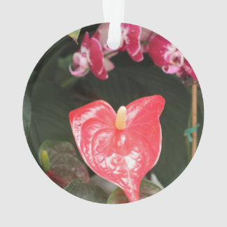 Orchids blooms ornament