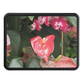 Orchids blooms trailer hitch covers