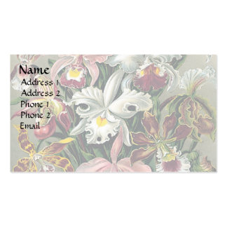 Orchids by Haeckel Double-Sided Standard Business Cards (Pack Of 100)