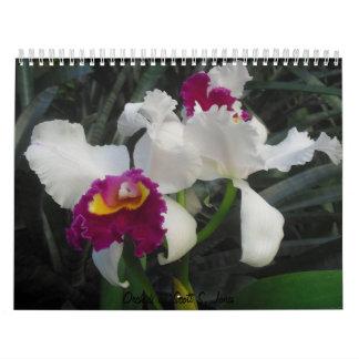 Orchids by Scott S. Jones Calendars
