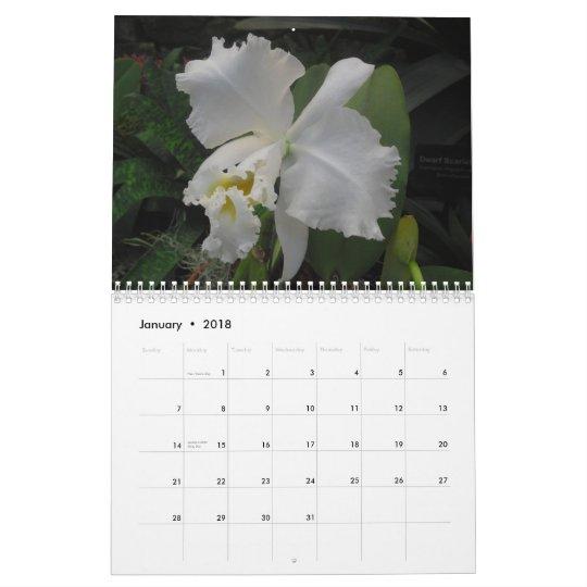 Orchids by Scott S. Jones Calendar