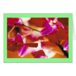 """""""Orchids"""" Card"""