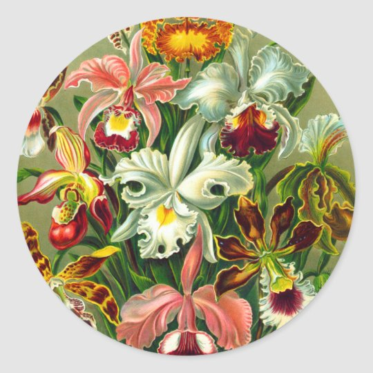 Orchids Classic Round Sticker