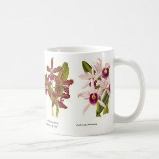 Orchids Coffee Mug