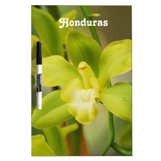 Orchids Dry-Erase Whiteboards