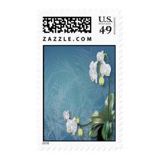 Orchids & Ferns Postage Stamps