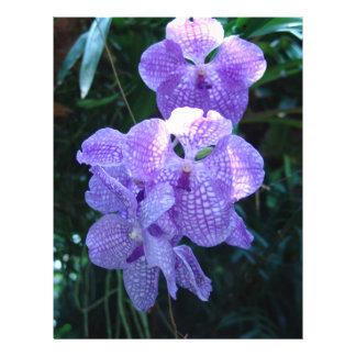 Orchids Flyer