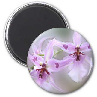 Orchids for Customize 2 Inch Round Magnet