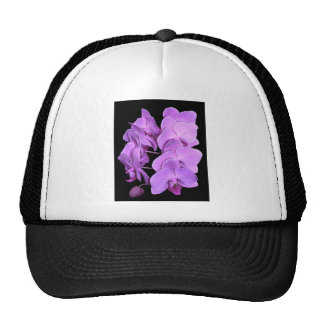 orchids fresco style hat