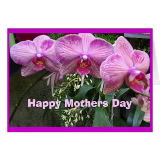 Orchids, Happy Mothers Day Card