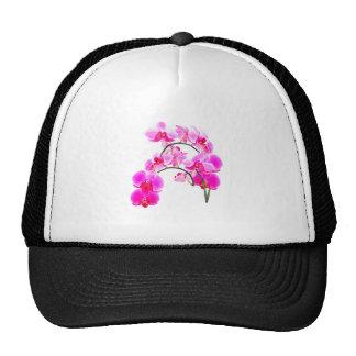 Orchids Mesh Hats