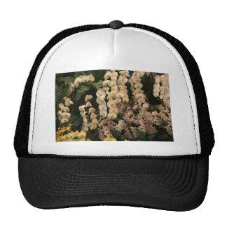Orchids Hats