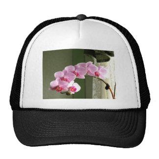 Orchids Mesh Hat