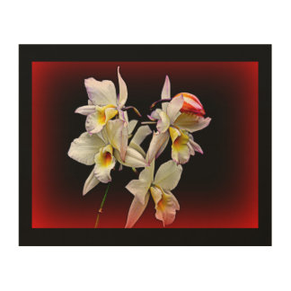 """ORCHIDS IN BLOOM"" 8x10 PHOTOGRAPH ON WOOD Wood Wall Decor"