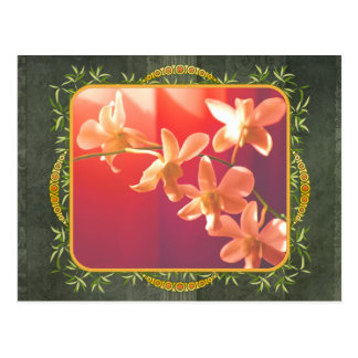 Orchids in the Sun Postcard