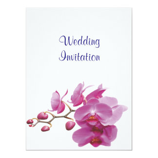 Orchids Inexpensive Wedding Packages Sets Kits Card