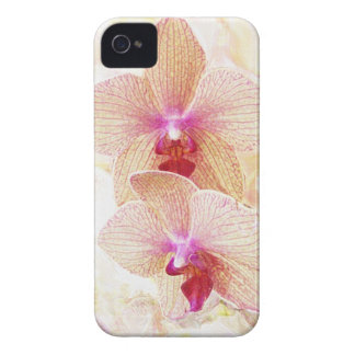 orchids iphone case iPhone 4 cover