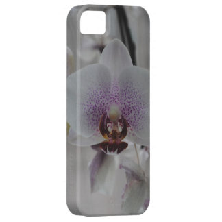 Orchids (iPhone Case) iPhone SE/5/5s Case