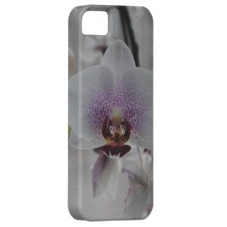 Orchids (iPhone Case) iPhone SE/5/5s Case