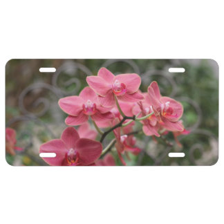 Orchids license plate