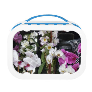 Orchids Lunch Box