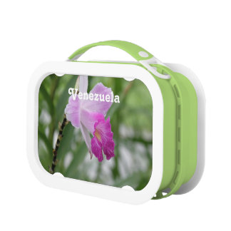 Orchids Yubo Lunchbox