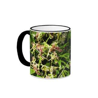 Orchids Mug