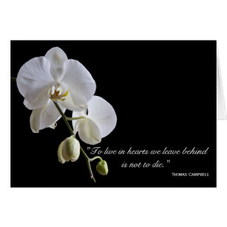 Orchids on Black Thank You for Your Sympathy Card
