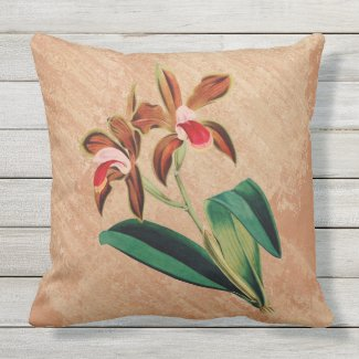 Orchids on Distressed Terra Cotta Pillow 20x20