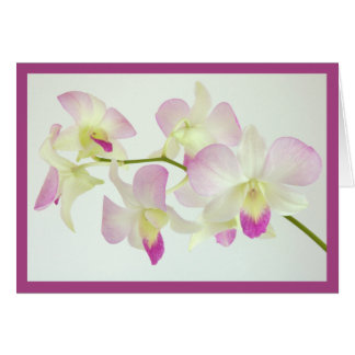 Orchids On White, Happy Birthday! Card