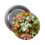 Orchids Pinback Buttons