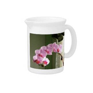 Orchids Drink Pitchers